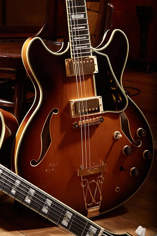 Guitarra eléctrica tipo Archtop, de cuerpo hueco y semi hueco