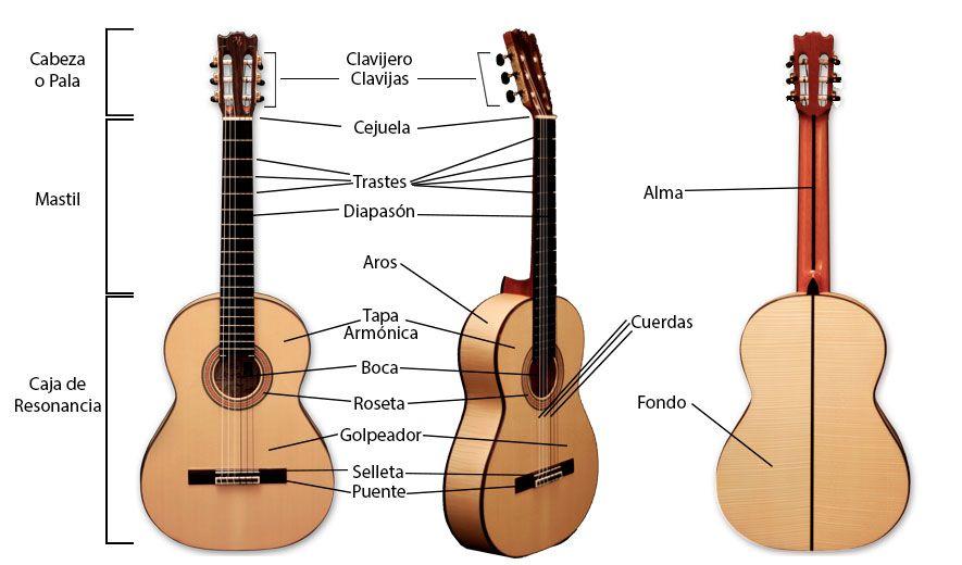 Distintas partes de la guitarra clásica y dónde se ubican.